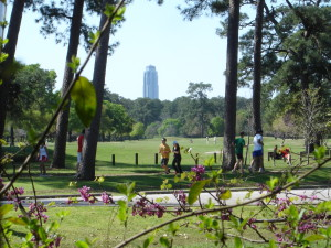 Volunteer with Music for Relief and LPU at Houston's Memorial Park