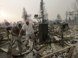 Wildfire Relief Fund