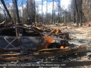 Center for Disaster Philanthropy California Wildfires Recovery Fund